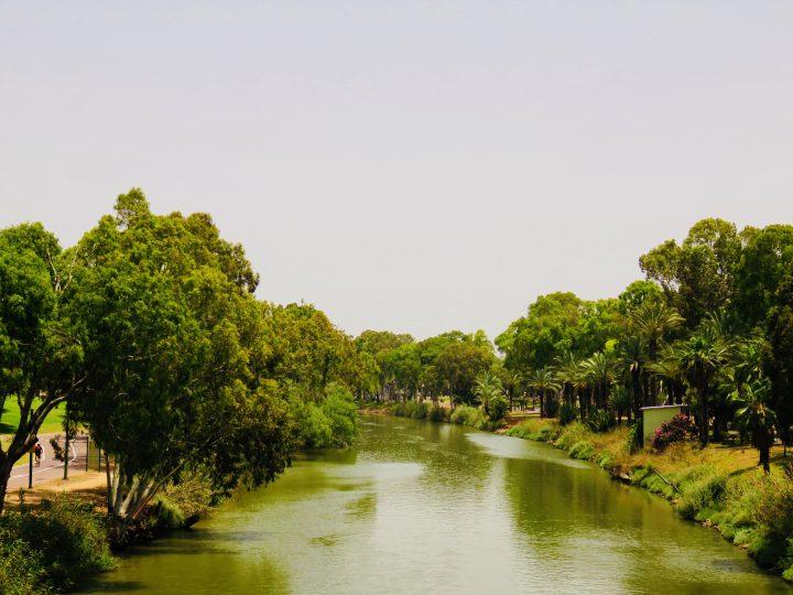 Yarkon Park by bike in Tel Aviv Israel ; Tel Aviv City Trip Travel Blog Inspirations