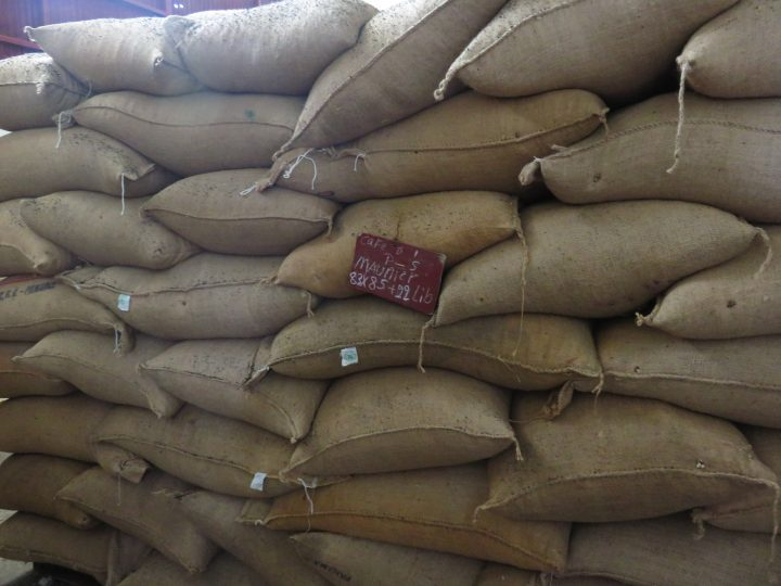Coffee production Bags in Boquete Panama; Panama Travel Blog Inspirations