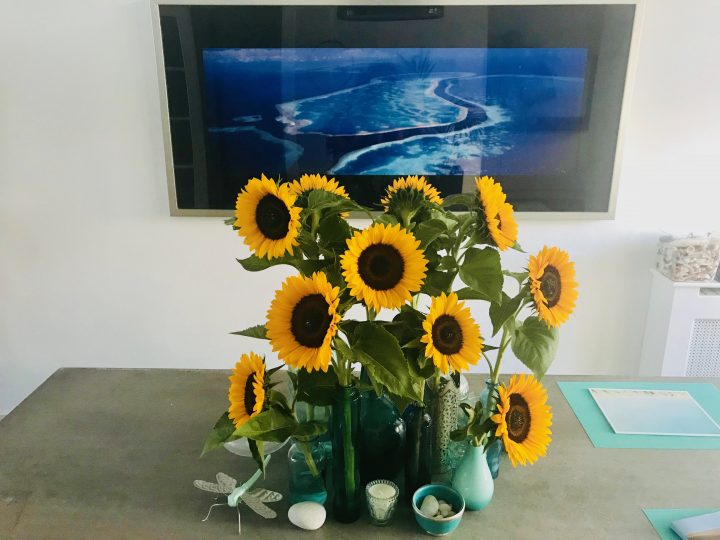Sun Flowers for decorations in Creativity; Creativity Tips and inspirations Blog