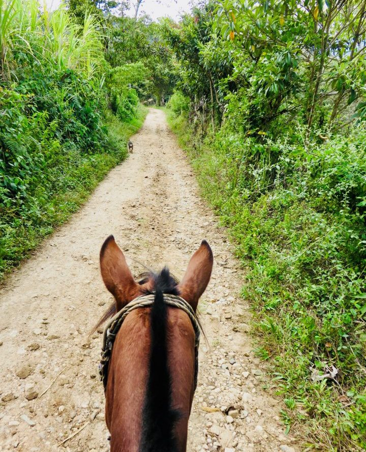 Horseback riding in San Agustin area Colombia; Colombia Travel Blog Inspirations