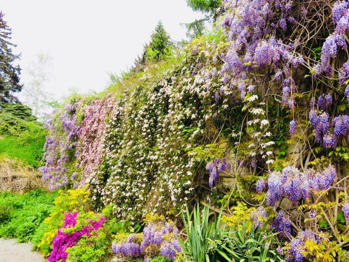 Garden on Petřin Hill in Prague; Prague City Trip Travel Blog Inspirations