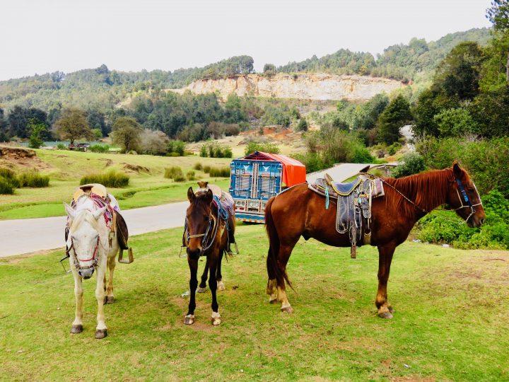 Horseback riding to Chamula San Cristobal de Las Casas Mexico, Mexico Travel Blog Inspirations