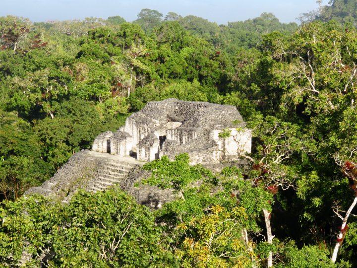 Mundo Perdido at the archaeological site Tikal Guatemala, Guatemala Travel Blog