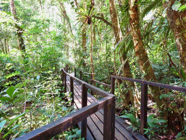 Walk to viewpoint Semuc Champey Guatemala, Guatemala Travel Blog