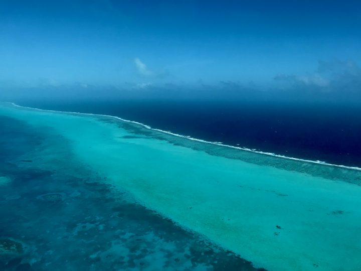 Barrier Reef with Tropical Air to Blue Hole Belize, Belize Travel Blog