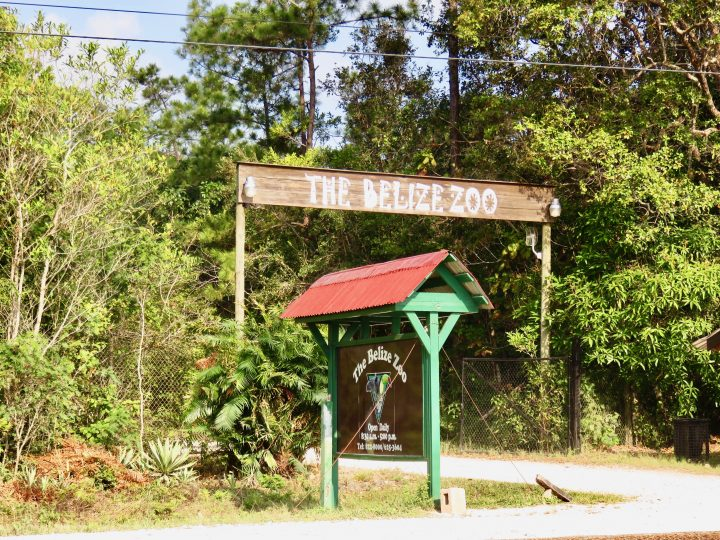 Entrance at the Belize Zoo in Belize, Belize Travel Blog