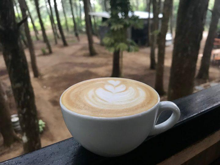 Delicious Coffee at restaurant and cafe TaYua Bosque on the Ruta de las Flores El Salvador, El Salvador Travel Blog