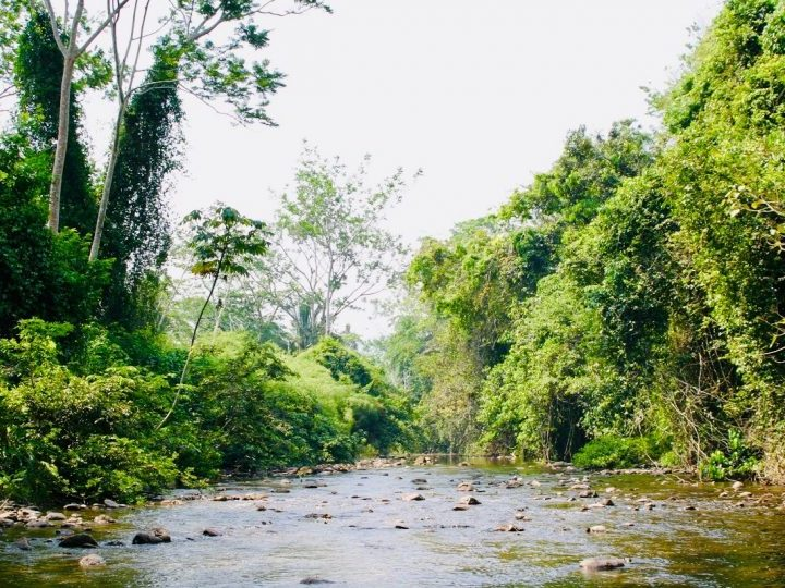 Roaring River on our way to the Maya Actun Tunichil Muknal (ATM) cave in Belize, Belize Travel Blog