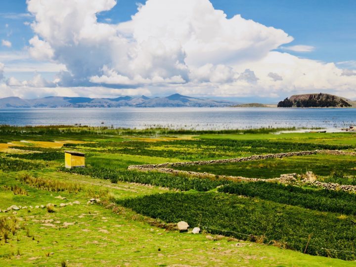 Lake Titicaca around Puno Peru, travel blog Peru