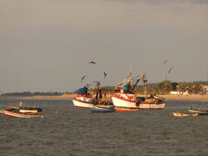 Fisherboats Zorritos Máncora Peru, travel blog Peru