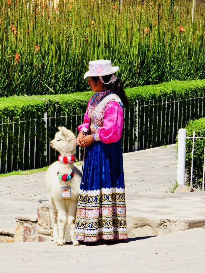 Women with Lama young in Peru, Peru Travel Blog