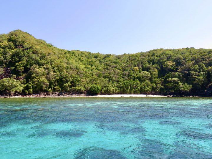 Apo Island tour from Siquijor Philippines Travel Blog