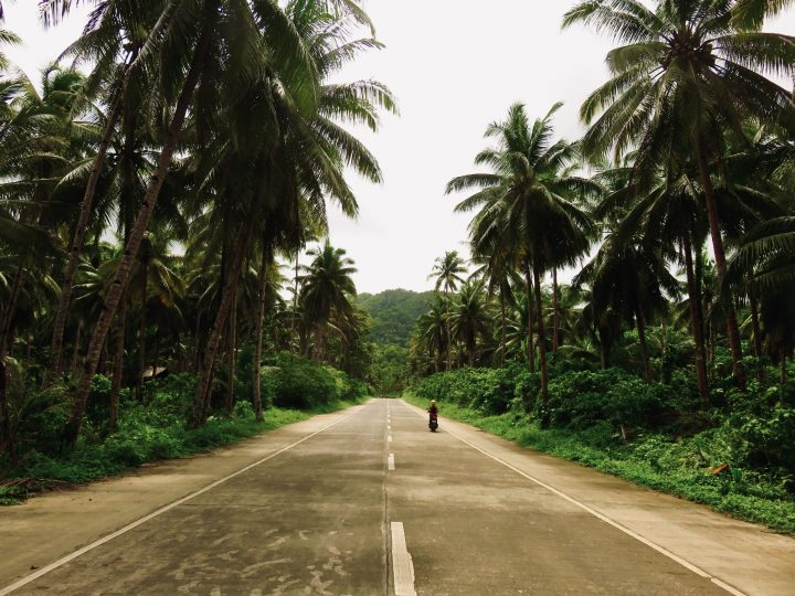 Coconut Road Surfing Siargao Philippines Travel Blog