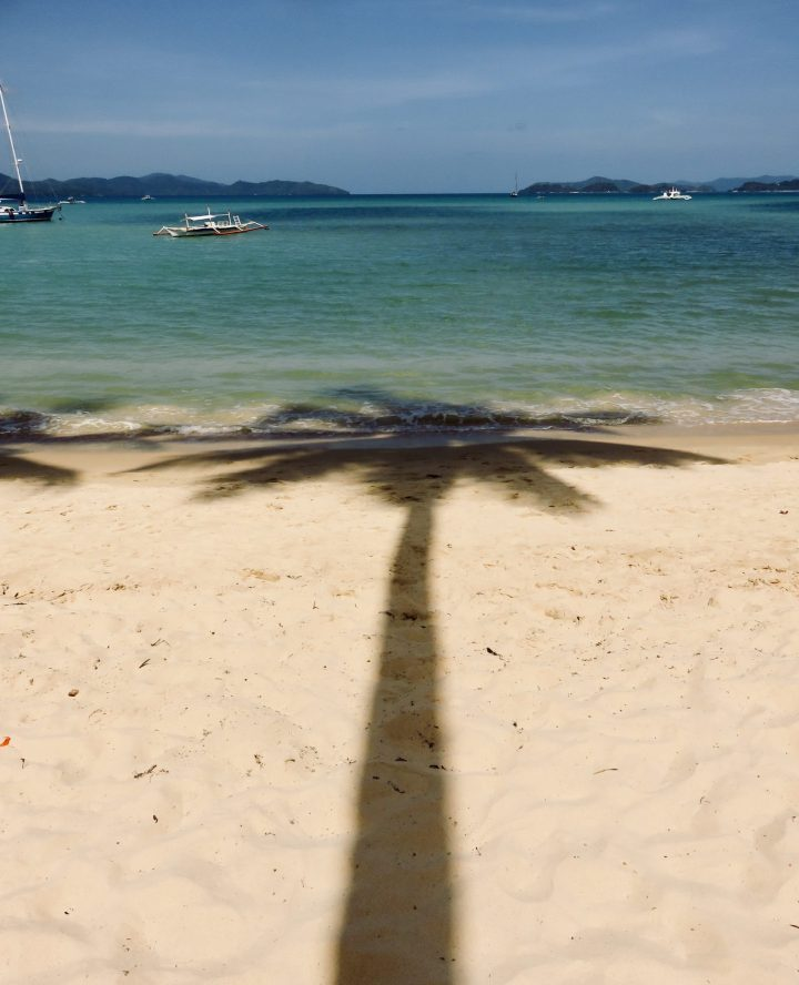 Shadow Palm Tree Port Barton Palawan Philippines Travel Blog