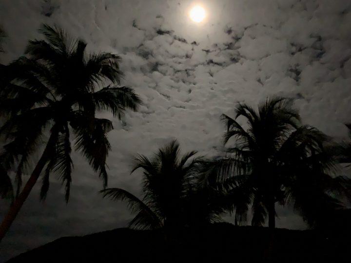 Sunset Palms Pucoy Island Palawan Philippines Travel Blog