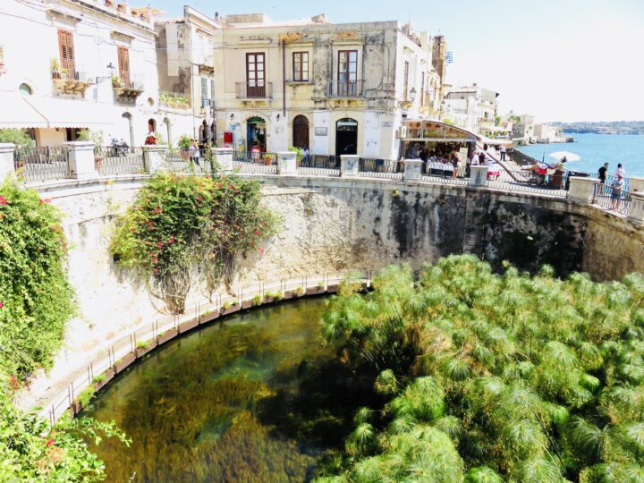 Fontana Aretusa Syracuse Ortygia Southeast Sicily Italy Travel Blog