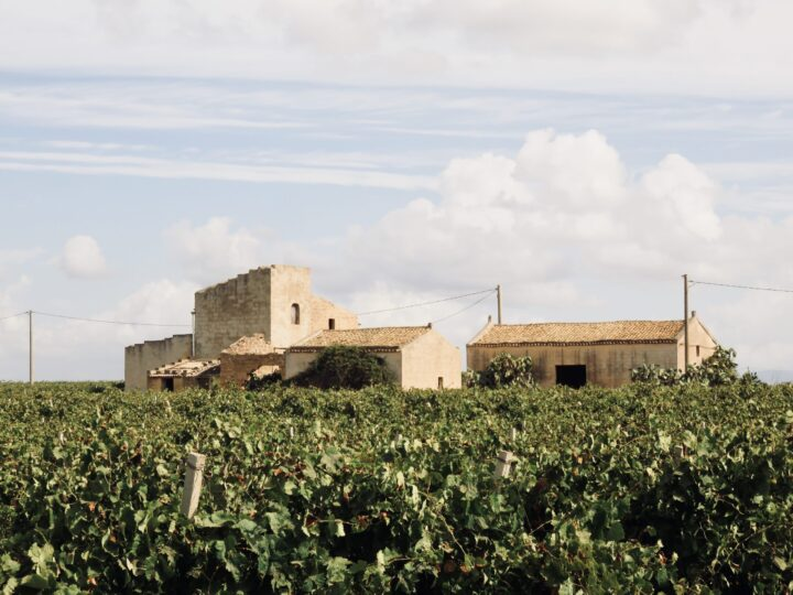 Wine Fields Marsala Tasting Cantina Pellegrino West Sicily Italy Travel Blog